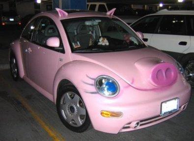 Pig Beetle