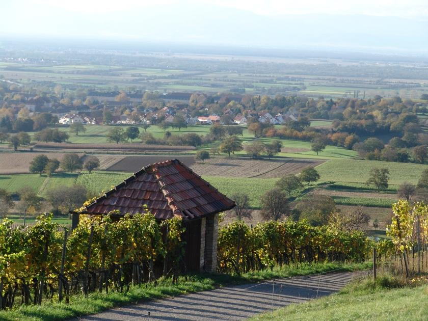 Markgraeflerland: source